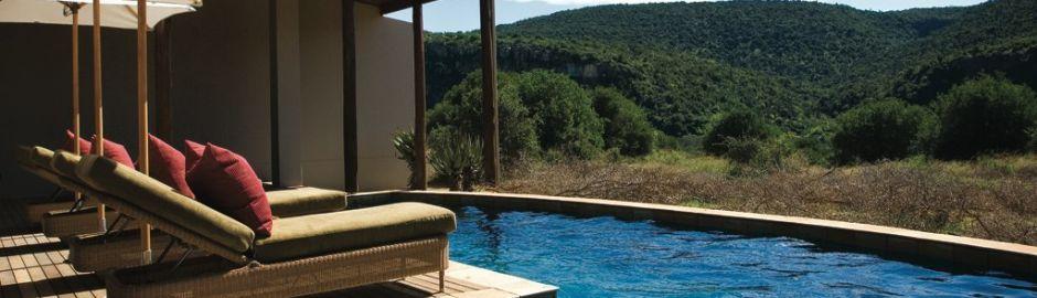 Kwandwe Private Game Reserve Pool b