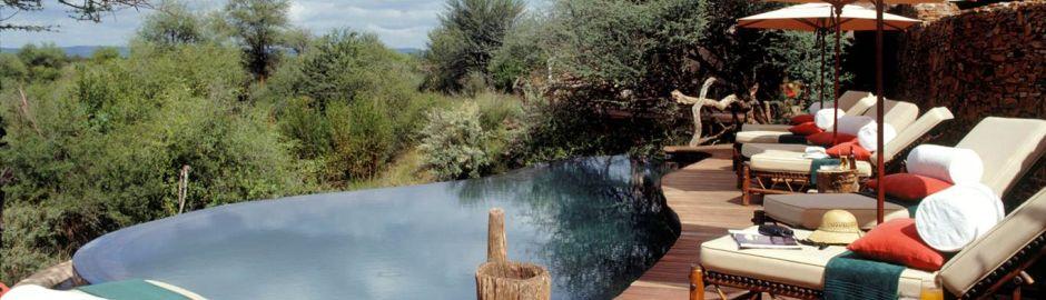 Makanyane Safari Lodge pool