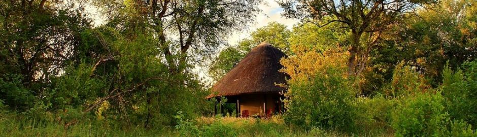 Motswari Safari Lodge Camp