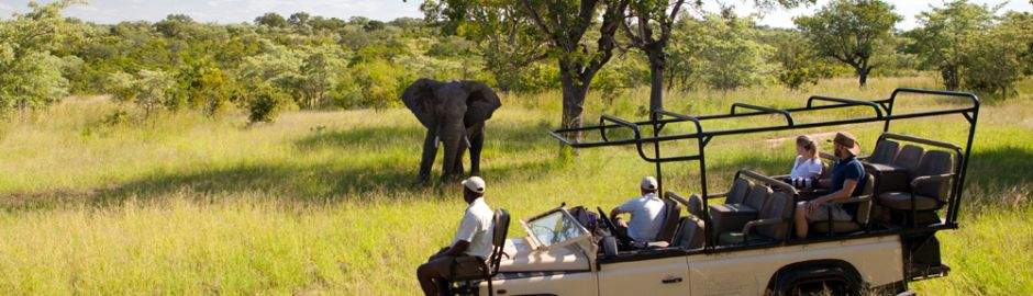 Ulusaba Private Game Reserve Game Drive