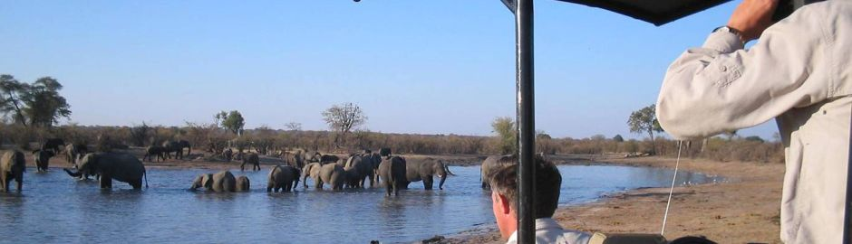 Victoria Falls Safari Lodge Watering Hole b