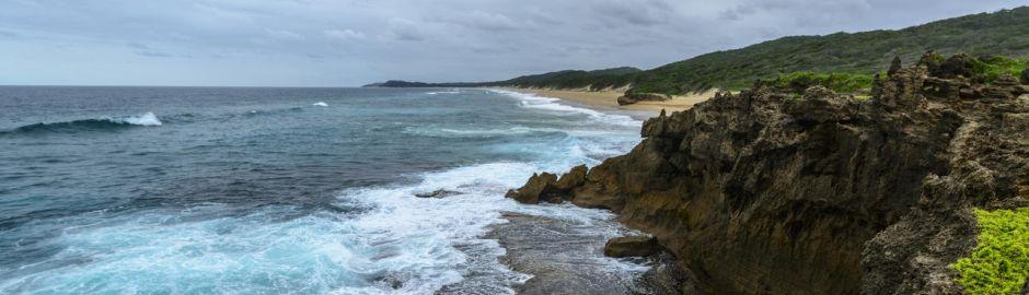 Ocean Excursion