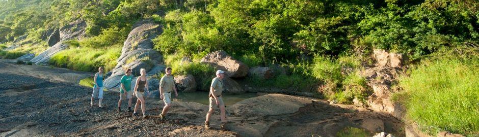 Leopard Mountain Game Lodge bush walk b