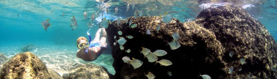 Snorkelling b