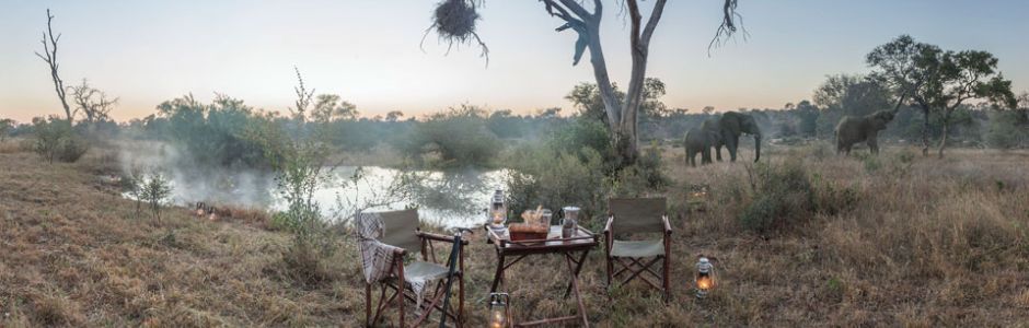 Kings Camp Timbavati bush dining