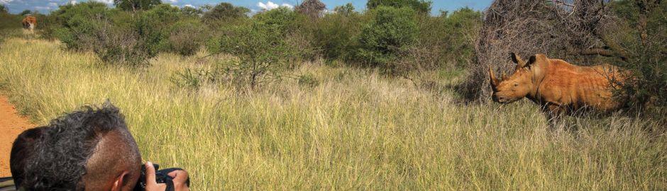 rhino Madikwe Safari Lodge