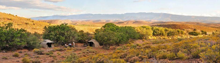 Sanbona Wildlife Reserve Camping Cape Town and Safari Honeymoon