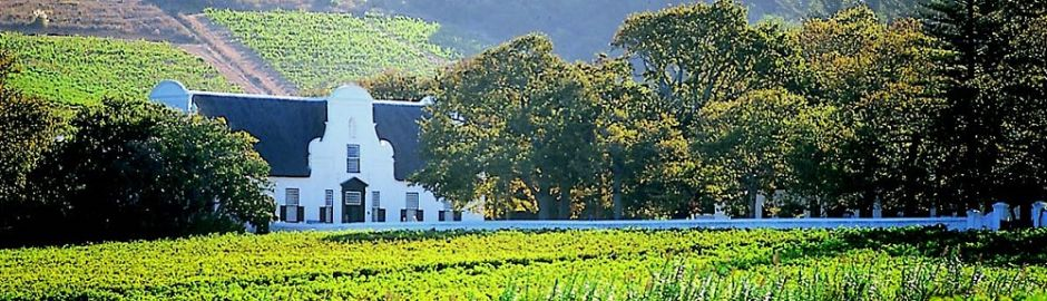 Abbey Manor Cape Town Wine Tasting Kruger honeymoon