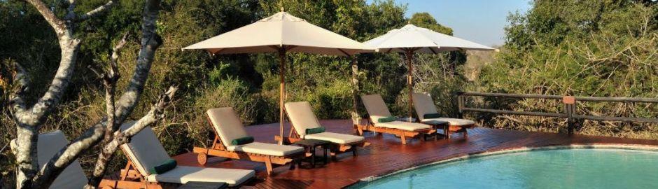 Hamiltons Tented Camp Pool Kruger honeymoon
