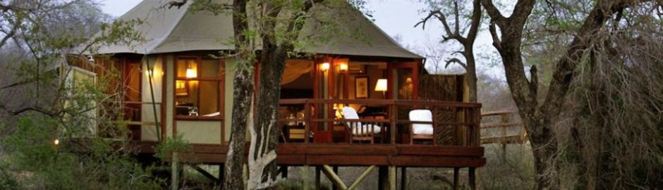 Hamiltons Tented Camp Tree Tent Kruger honeymoon