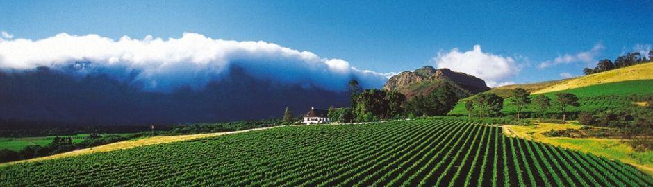 Mont Rochelle Hotel Vineyards Cape Town honeymoon