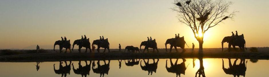 Kapama River Lodge Elephant Ride Cape Town and Kruger honeymoon