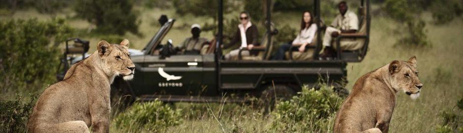 Klein's Camp Serengeti Game Drive