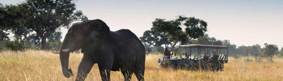 Greatest Africa © Xaranna Okavango