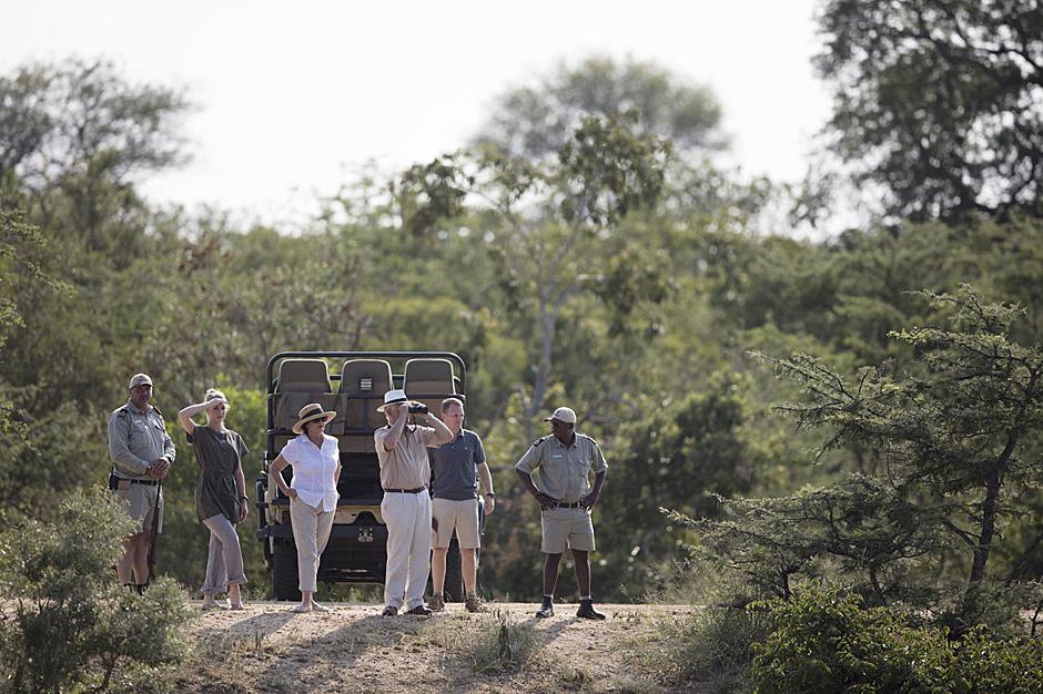 Types of Safari